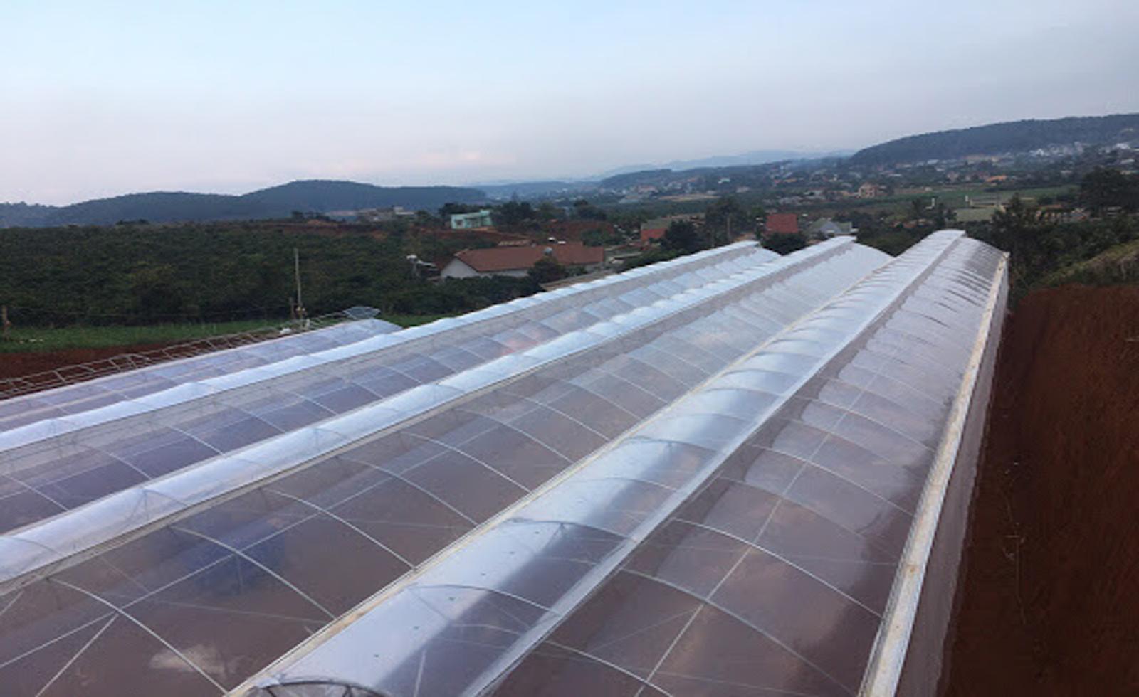Màng nhà kính: Sản phẩm hàng đầu cho nông nghiệp 4.0 năm 2021